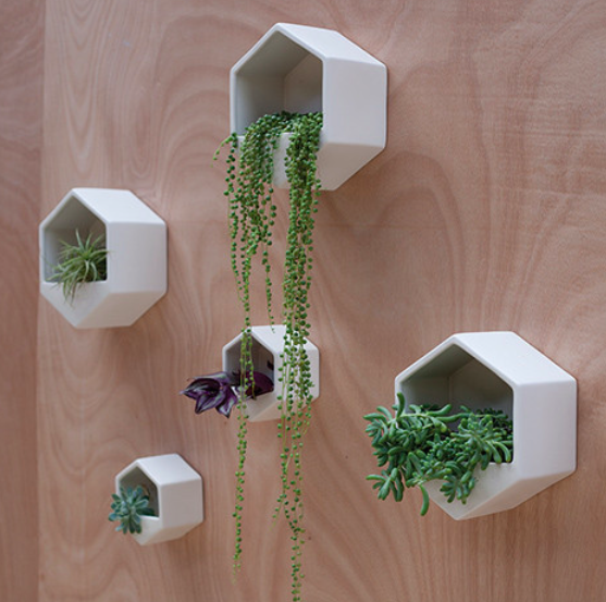 Wall planter, For Keeps