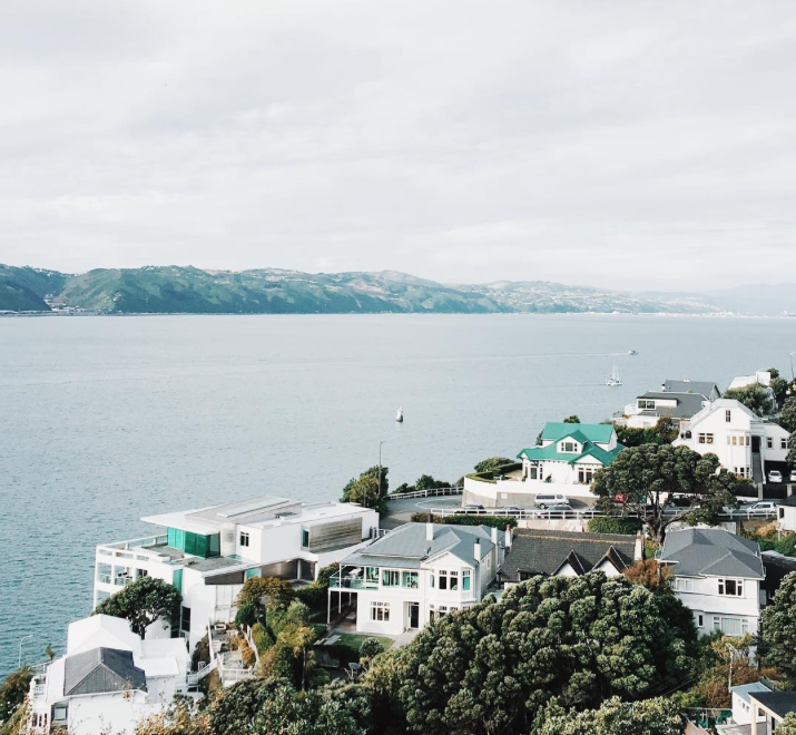 Travel and Design: Explore Wellington with Edelweissl