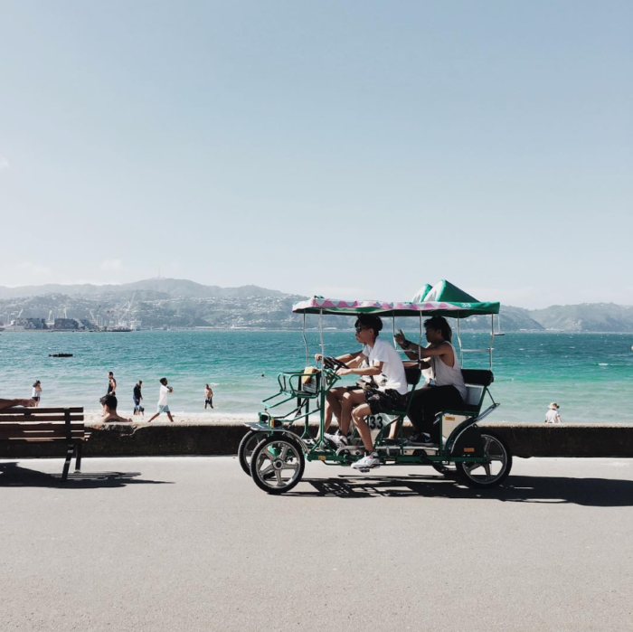 Wellington, Travel, Design, Explore Wellington, Visit Wellington, Instagram, Home Scene Journal, NZ Design, Edelweissl, photography,